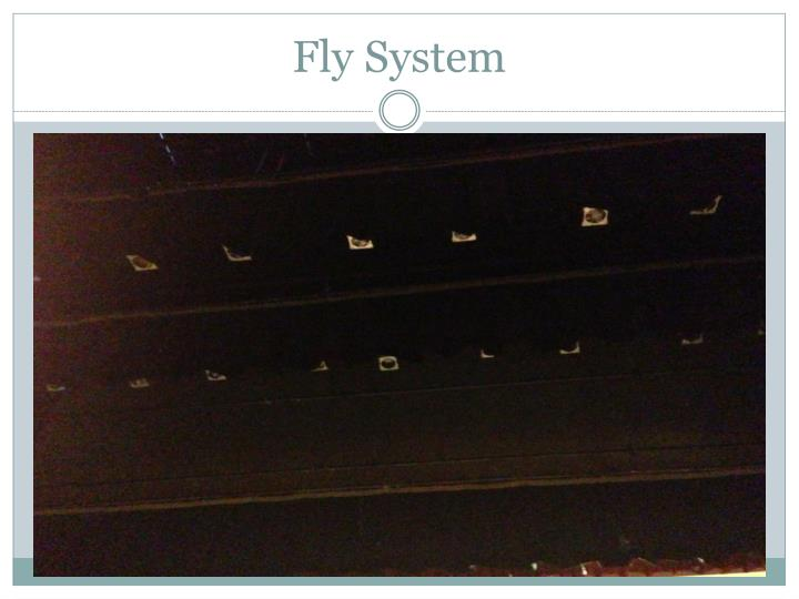 Fly System