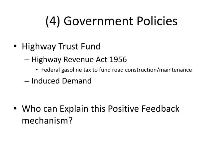 (4) Government Policies