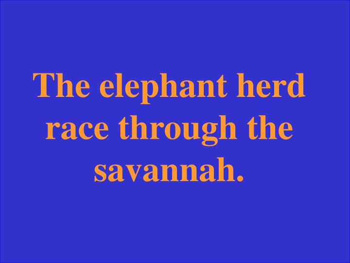 The elephant herd race through the savannah.