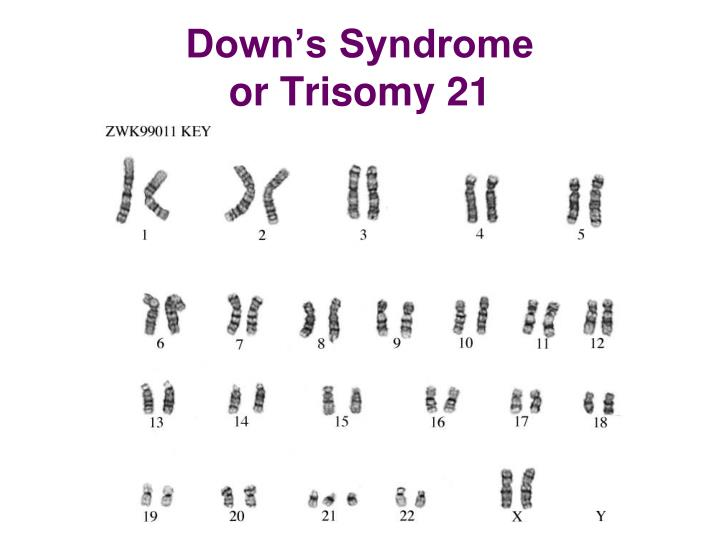 What can karyotypes be used to determine