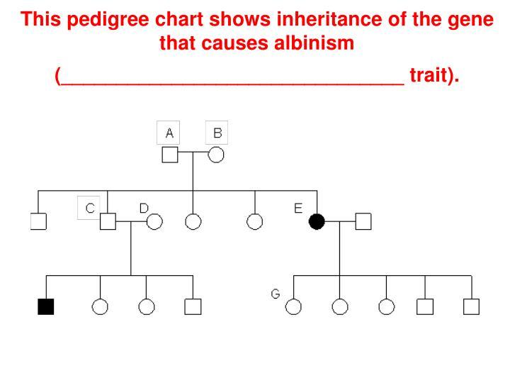 PPT - Chapter 14: Human Heredity (Genetics II) PowerPoint ...