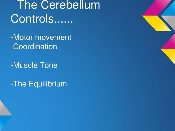 The Cerebellum Controls......