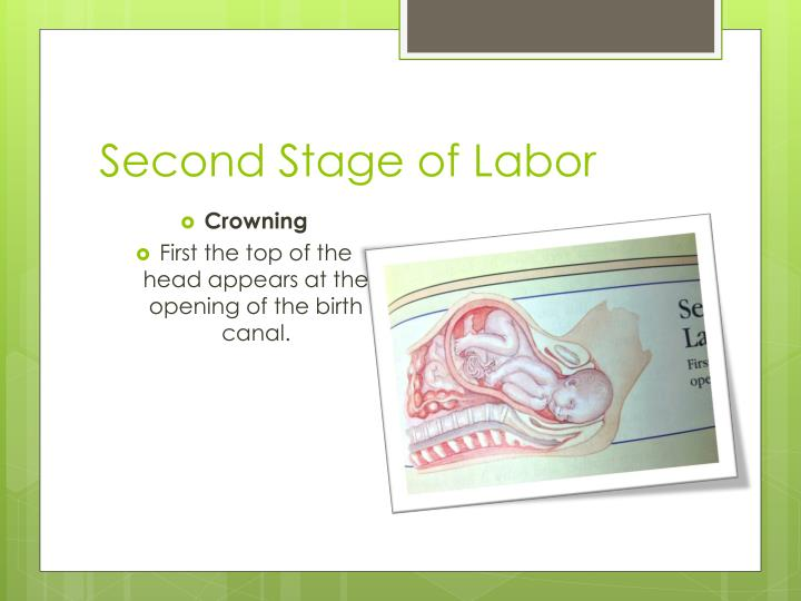 Second Stage of Labor