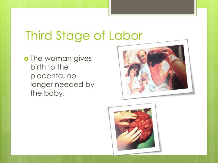 Third Stage of Labor
