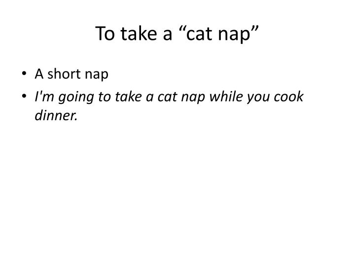 "To take a ""cat nap"""