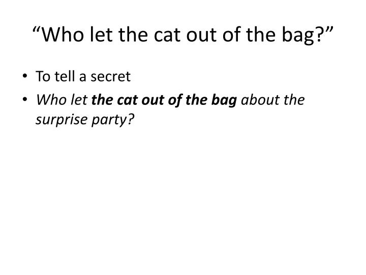 Who let the cat out of the bag