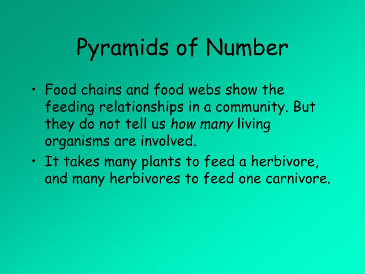 Pyramids of Number