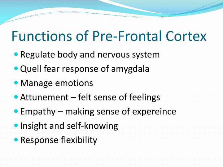 Functions of Pre-Frontal Cortex