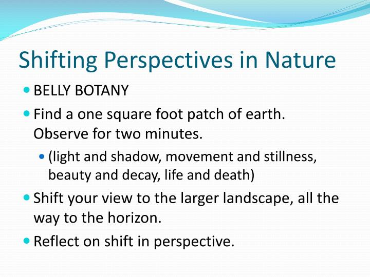 Shifting Perspectives in Nature
