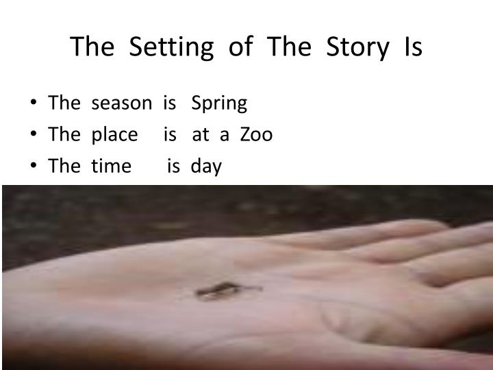 The  Setting  of  The  Story  Is