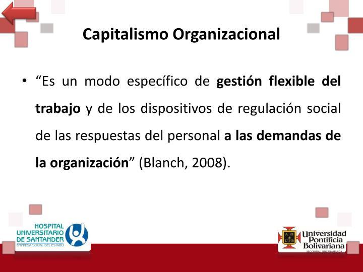 Capitalismo Organizacional