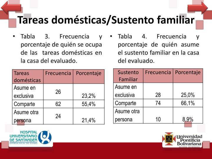 Tareas domésticas/Sustento familiar