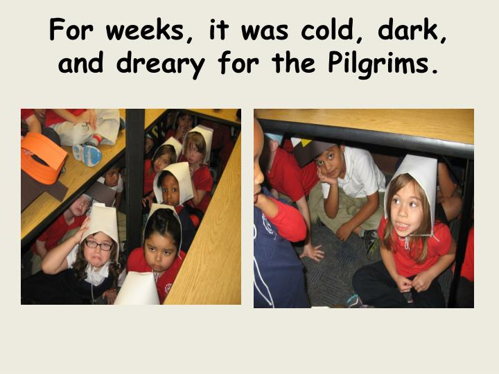 For weeks, it was cold, dark, and dreary for the Pilgrims.