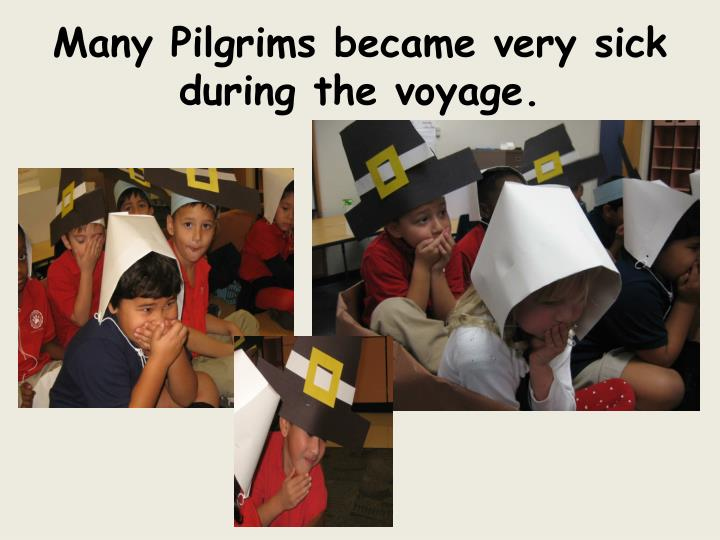 Many Pilgrims became very sick during the voyage.