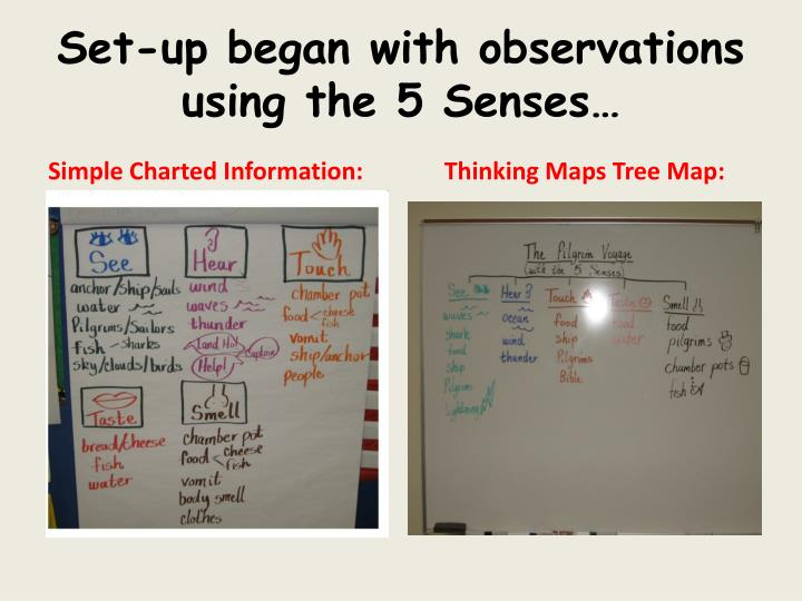 Set-up began with observations using the 5 Senses…