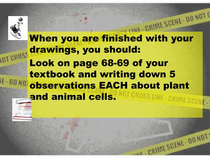 When you are finished with your drawings, you should: