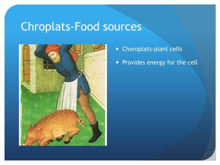 Chroplats-Food sources