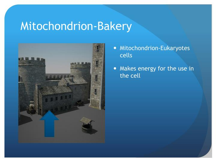 Mitochondrion-Bakery