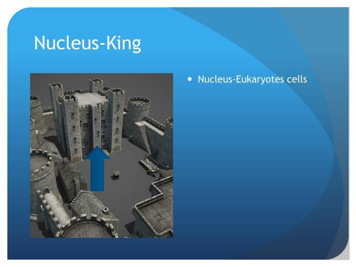 Nucleus-