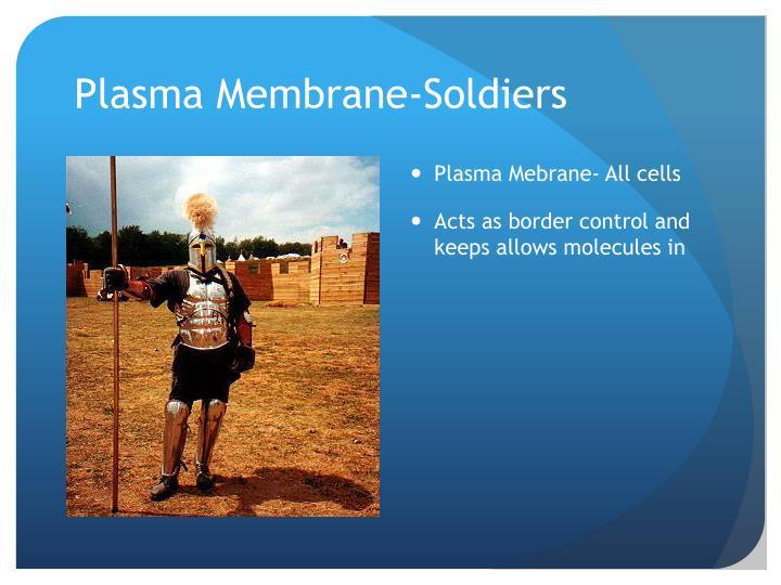 Plasma Membrane-Soldiers