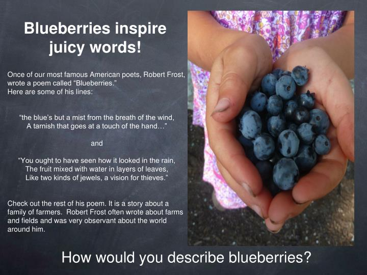 Blueberries inspire juicy words