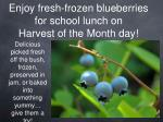 enjoy fresh frozen blueberries for school lunch on harvest of the month day
