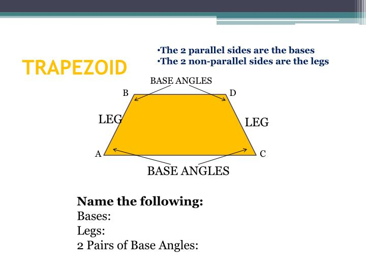 The 2 parallel sides are the bases