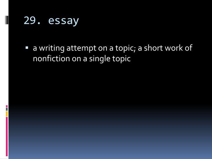29. essay