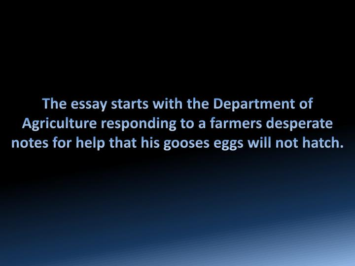 The essay starts with the Department of Agriculture responding to a farmers desperate notes for help...