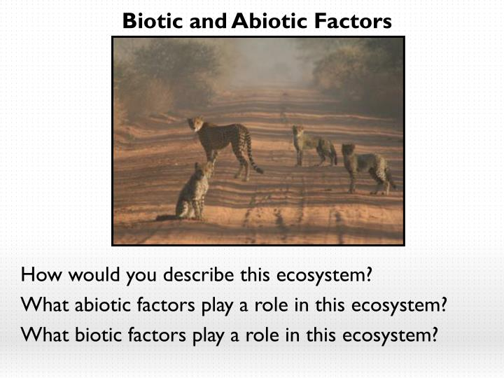 Biotic and Abiotic