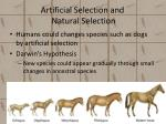 artificial selection and natural selection