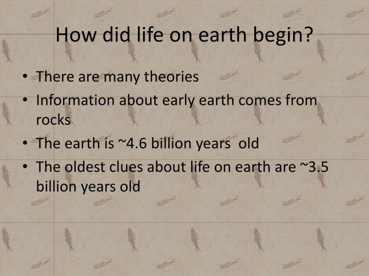 How did life on earth begin?