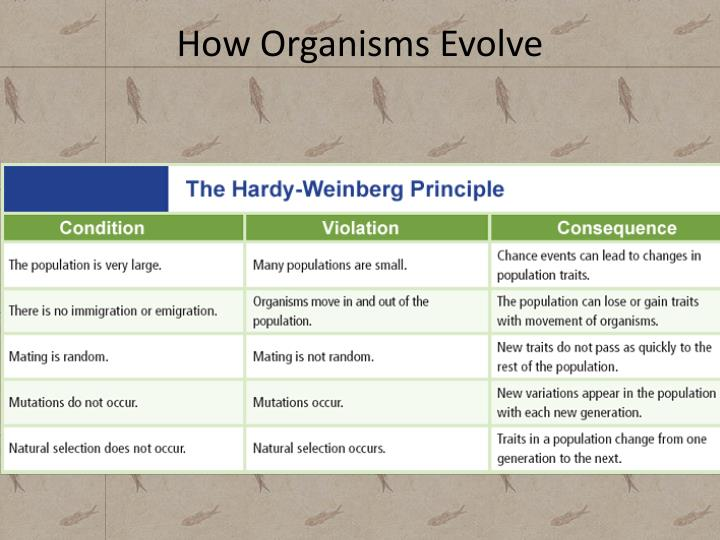 How Organisms Evolve