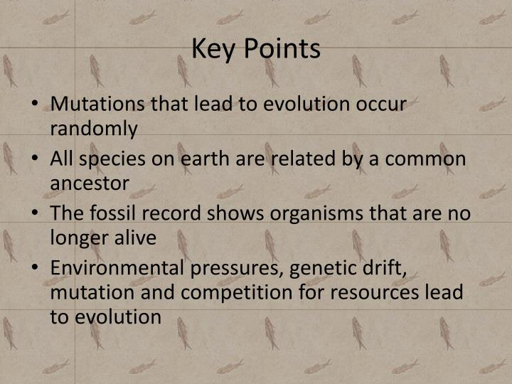 Key points1
