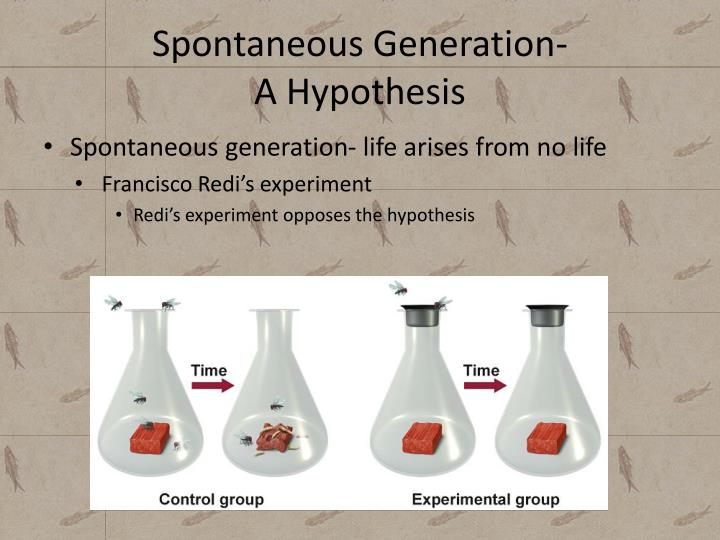 Spontaneous Generation-