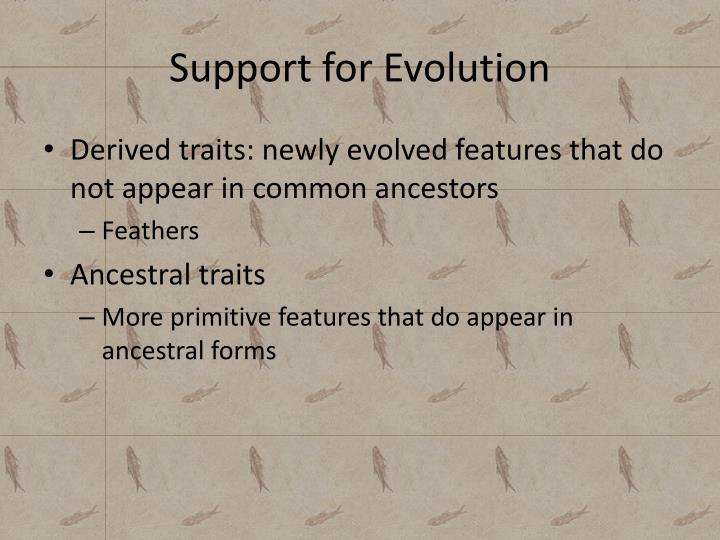 Support for Evolution