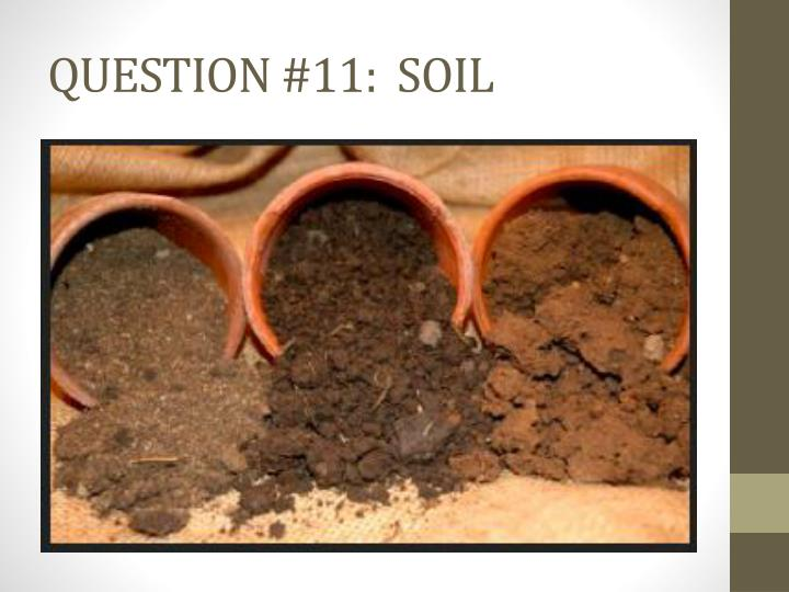 QUESTION #11:  SOIL