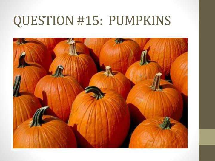 QUESTION #15:  PUMPKINS