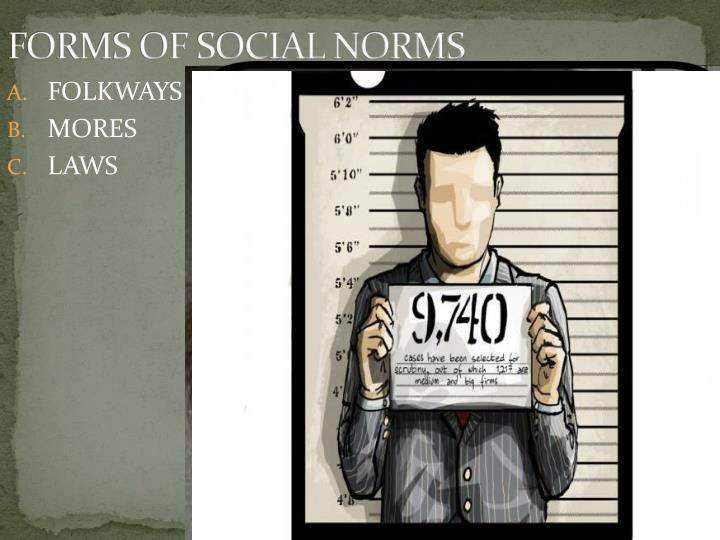 FORMS OF SOCIAL NORMS