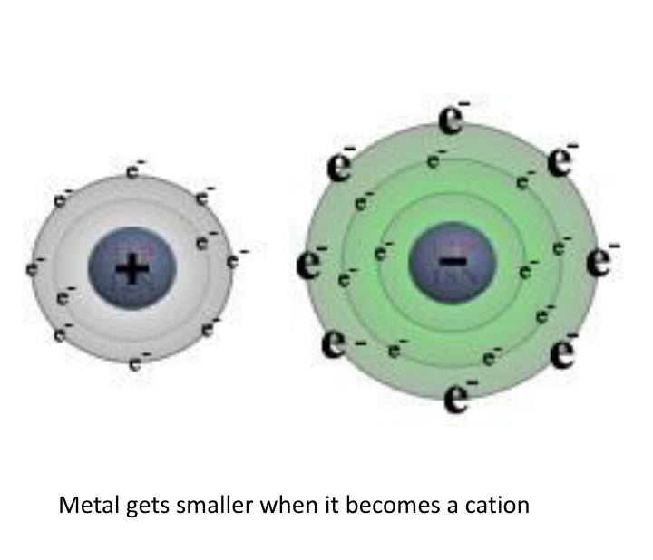 Metal gets smaller when it becomes a cation