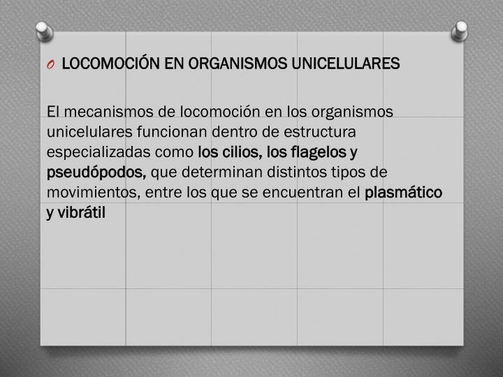 LOCOMOCIÓN EN ORGANISMOS UNICELULARES