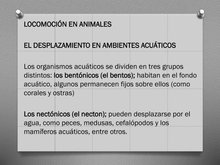 LOCOMOCIÓN EN ANIMALES