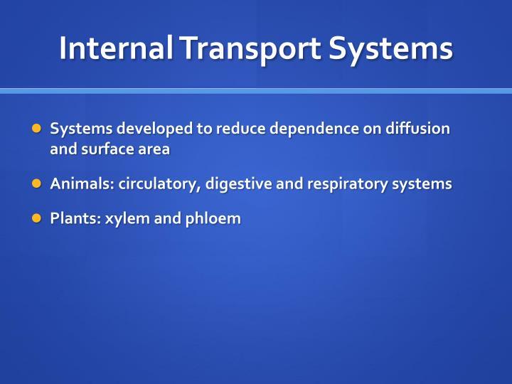 Internal Transport Systems