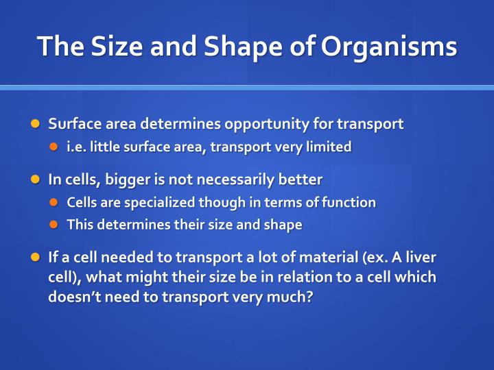 The Size and Shape of Organisms