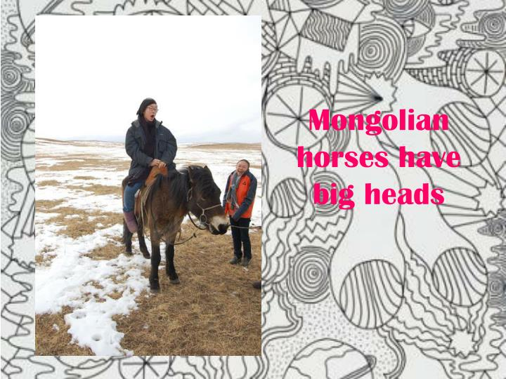 Mongolian horses have big heads