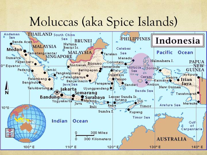Moluccas (aka Spice Islands)