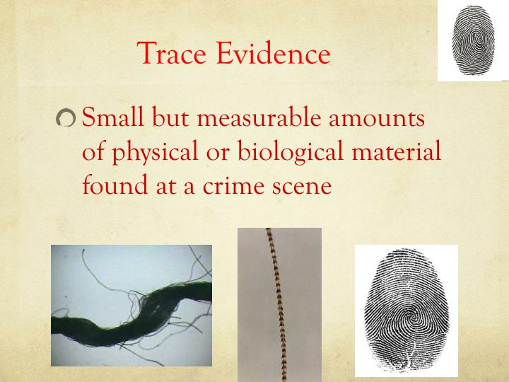 Evidence Collection Guidelines