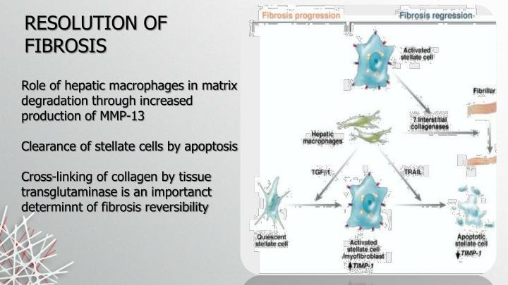 RESOLUTION OF FIBROSIS