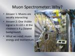 muon spectrometer why