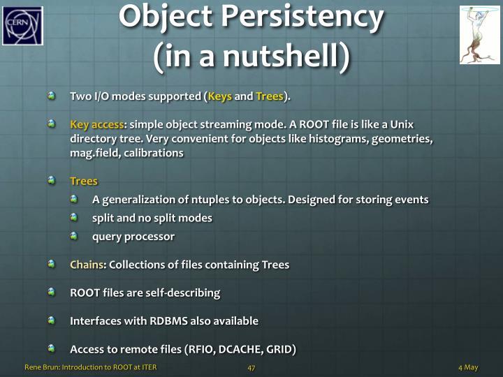 Object Persistency
